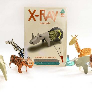 koa-koa-xray-animals-set-mrszebra