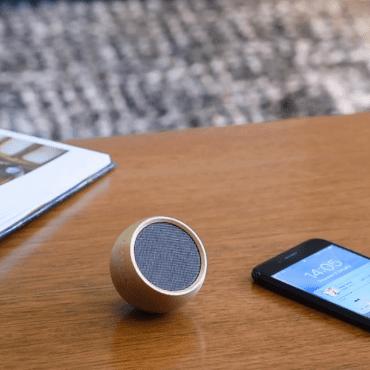 Gingko-Tumbler-Selfie-Bluetooth-Speaker-mrszebra